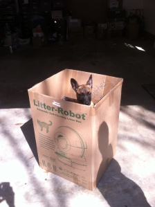 Box o Lina